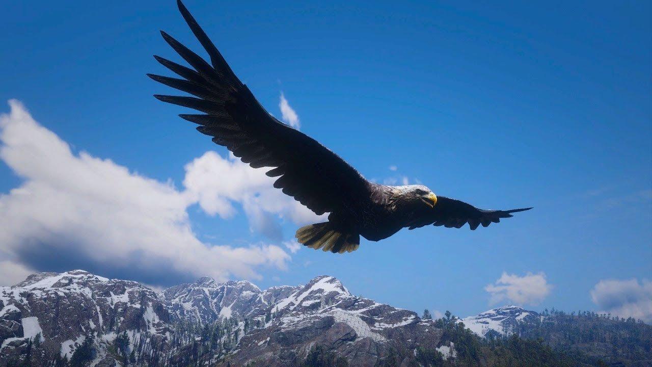 Voando com a aguia red dead