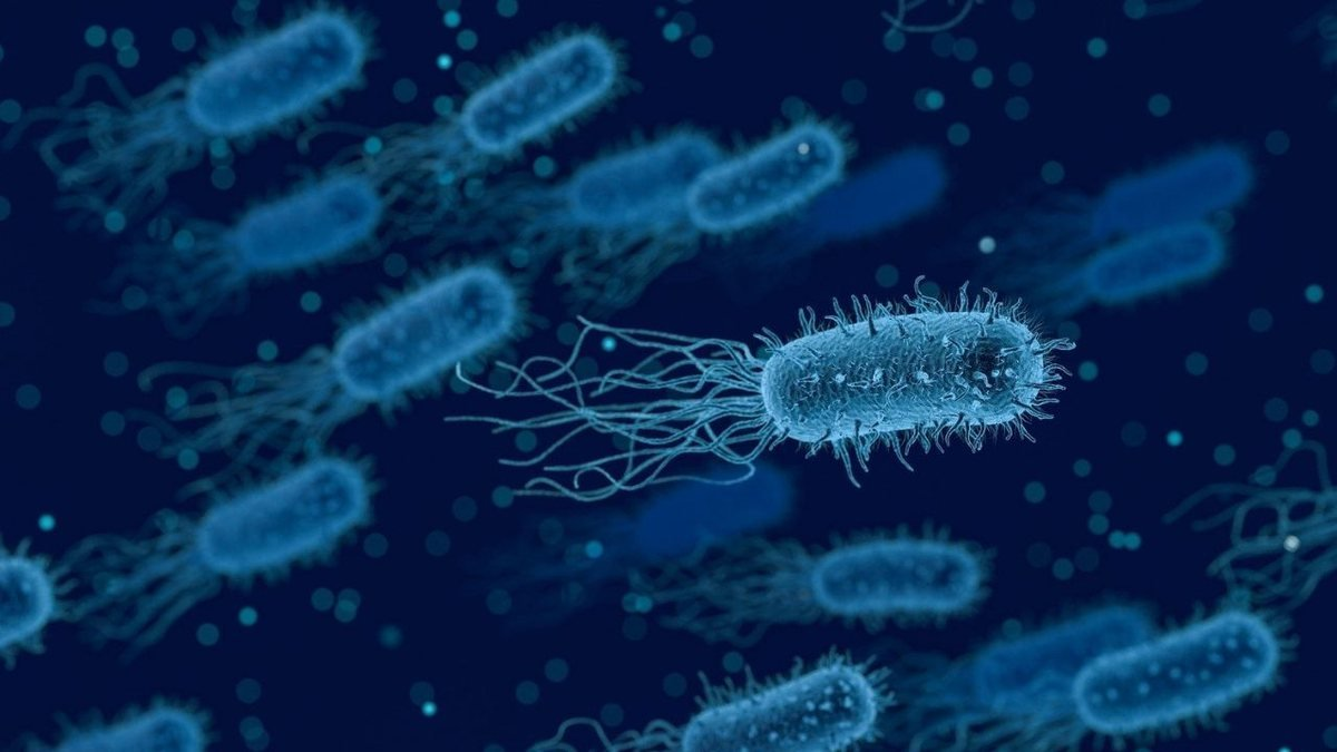 """Autoridades chinesas informaram que mais de 3 mil pessoas no noroeste da China adoeceram depois que uma bactéria """"escapou"""" de um laboratório."""